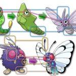 バタフリーとモルフォンの進化